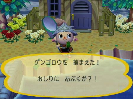 2009-05-05森4.jpg