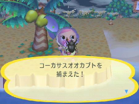 2009-07-04森3.jpg