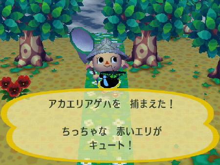 2009-05-05森5.jpg